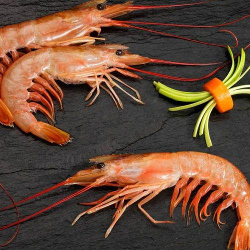 Argentinian Red Shrimps frozen <br>on board (Pleoticus Muelleri).